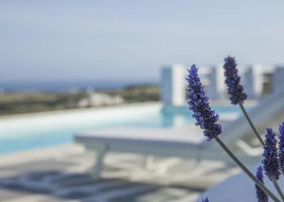 Villa Elafina | Pool mit Meerblick